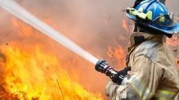 Лесной пожар вспыхнул нагоре возле популярного курорта вТурции