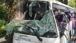 ВКалиниградской области полный пассажиров автобус врезался вдерево— фото