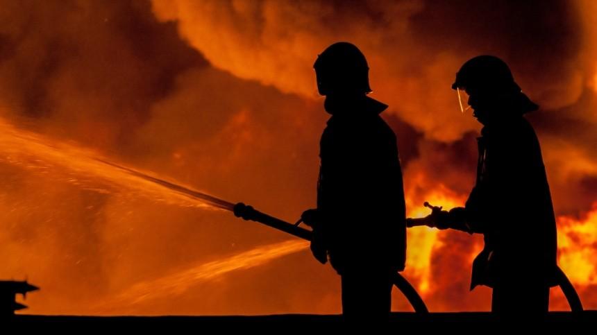 Крупный торговый центр сгорел вПензе— видео
