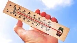 Около 100 жителей Канады стали жертвами аномальной жары