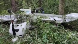 Пилот легкомоторного самолета рассказал опричинах крушения вПодмосковье