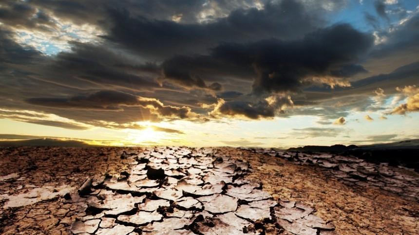 Россиян виюле ожидает сильнейшая запоследние десять лет засуха