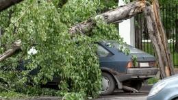 «Унас крышу снесло, прикинь!»— буря сгрозой пронеслись поОренбургской области