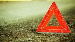 Водитель на«Газели» устроил огненное ДТП вНовосибирской области— видео
