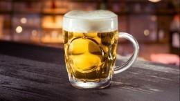 ВФинляндии сварили пиво нагусином помете