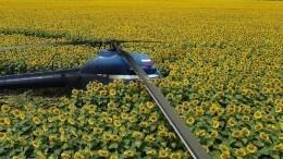 Пилот рухнувшего Ми-2 вКабардино-Балкарии сбежал сместа ЧП— фото