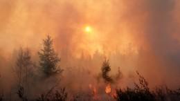 Впервые заполтора века: Какую аномалию ожидают вРоссии вслед зажарой?