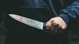 Исполосована ножом: вПодмосковье зверски убита художница Анастасия Огрызкова