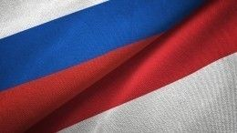 Россия готова поставлять вакцину отCOVID-19 вИндонезию