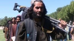 Талибы пообещали ненарушать границы соседних стран Афганистана
