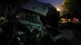 Двое детей ивзрослый погибли вДТП под Армавиром— жуткое видео сместа аварии
