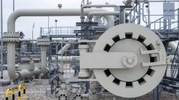 «Сголовой невсе впорядке»: вСовфеде оценили предложение Зеленского по«СП-2»