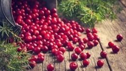 Грибы, ягоды иорехи могут резко подорожать вРоссии
