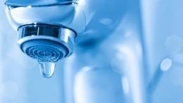 Жители Ленобласти остались без воды ваномальную жару. Чиновники обвинили дачников