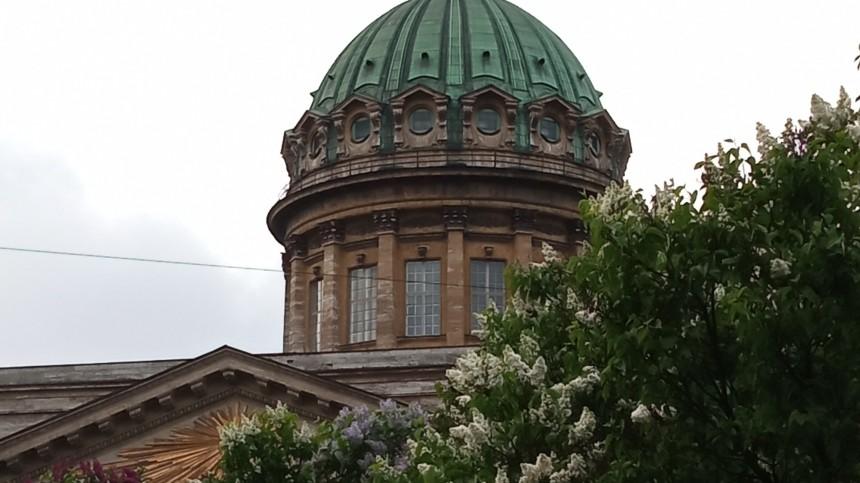 Соборы вПетербурге лишились открыточного вида из-за аномальной жары
