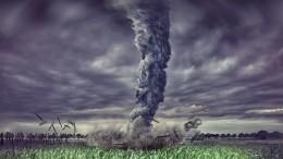 Столб отземли донебес: «Пыльный дьявол» вМытищах попал навидео