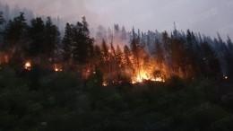 Видео: Огонь отлесных пожаров вЯкутии подошел вплотную кмногоквартирным домам