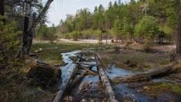 Паводок снес мост через реку вХабаровском крае— видео