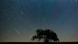 Поток Персеиды: астрономы рассказали, когда можно будет увидеть звездопад