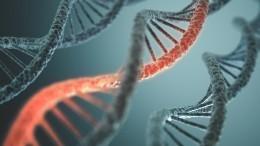 Ученые обнаружили впочве ДНК неизвестного происхождения