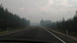 Трассу «Кола» перекрыли вКарелии из-за лесных пожаров— видео
