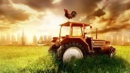 Внародную программу «Единой России» предложено включить аграрную политику