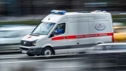 Пробитый череп, переломы лица: пенсионерку зверски изнасиловали влесу вМоскве