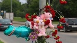 Сбитых студенткой вМоскве малышей похоронили под Вологдой— эксклюзивное видео