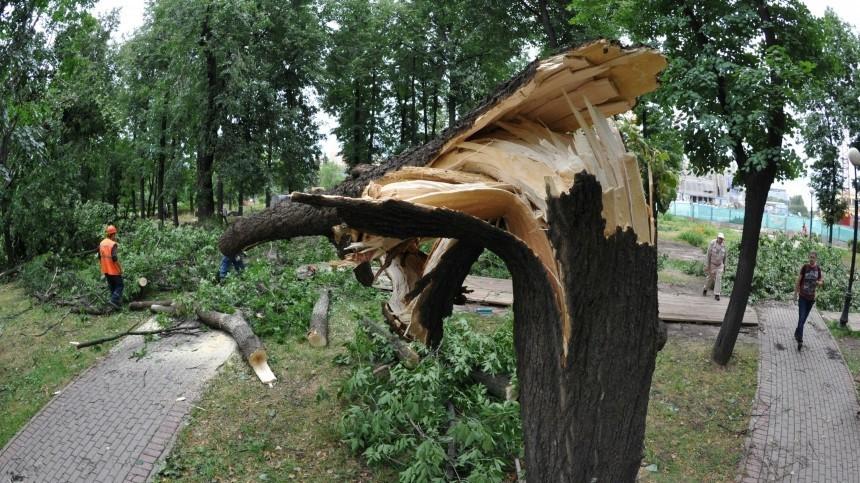 Видео: Ураганный ветер снес крышу школы вОренбургской области