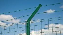 Литве нехватило проволоки для строительства заграждения награнице сБелоруссией