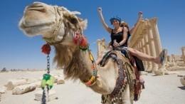 Отчего будут зависеть цены наотдых вЕгипте иДоминикане? —рассказали вАТОР