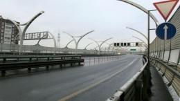 Сила кольца: вПетербурге планируют реализацию новых транспортных проектов