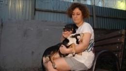 Для потерявшей две лапы бездомной собаки вНовосибирске сделали титановые протезы