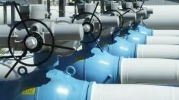 Торги накрылись: «Газпром» снова отказался увеличивать транзит через Украину