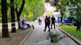 Автобус влетел встолб врайоне Ленинских гор вМоскве