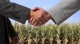 Чиновников вЛенобласти подозревают внезаконной продаже элитных земельных участков