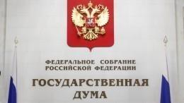 Новые люди: вчем главная задача малых партий вГосдуме РФ