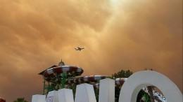 Спасение с«Титаника»: власти Турции признали лесные пожары национальной катастрофой