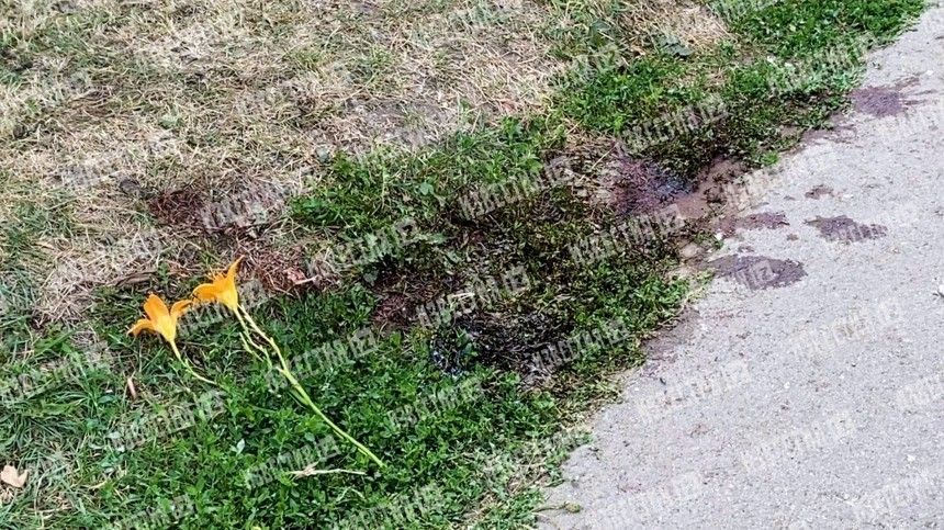 Подруги рассекретили последнее желание убитой самарской школьницы