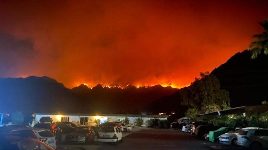 Путин подтвердил намерение РФидальше помогать Турции втушении лесных пожаров