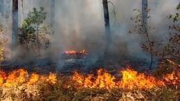 Для тушения пожаров вОренбурге привлекли вертолет