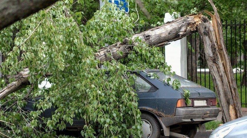 Три человека погибли и15 пострадали врезультате урагана вТверской области