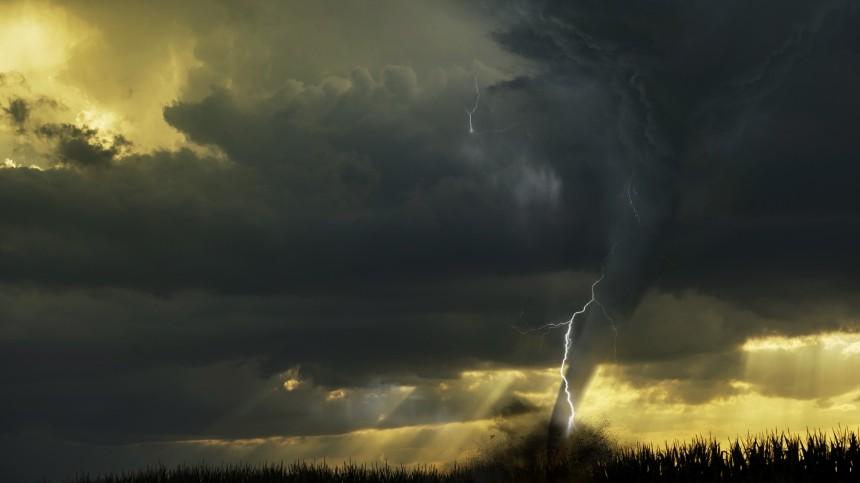 Словно «гигантским топором» ураган порубил дома идеревья вТверской области
