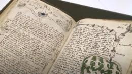 Самая загадочная книга вмире: очем написано вманускрипте Войнича?