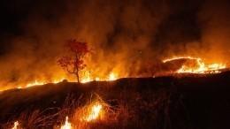 Природному пожару под Оренбургом присвоили максимальный ранг сложности