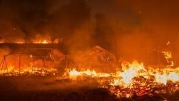 Грецию охватили крупнейшие запоследние 30 лет пожары