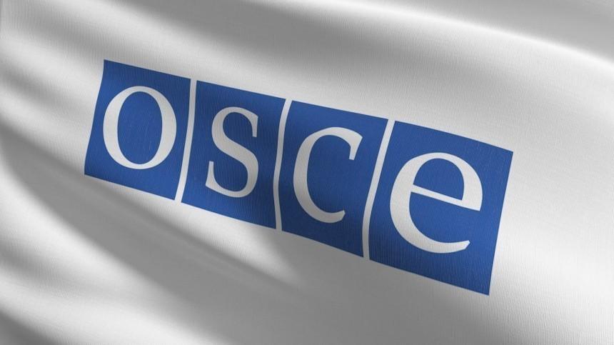 Полная «дискредитация»: кто очерняет российские выборы через ОБСЕ?