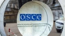 Политизированный демарш: почему ОБСЕ отказалось прислать наблюдателей навыборы вРФ