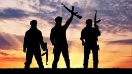 Совместные учения РФиСирии поборьбе стерроризмом прошли впровинции Хама