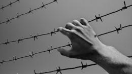 Хроника одного побега: как Мавриди икомпания улизнули изИВС вПодмосковье